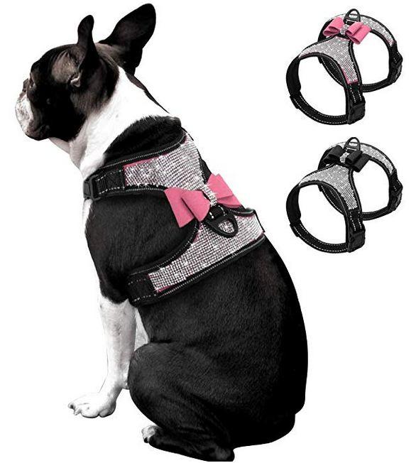 Reflective French Bulldog Rhinestone Harness