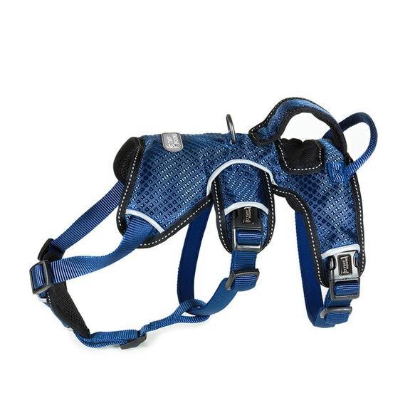 senior french bulldog harness