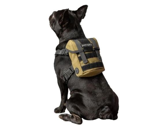 french bulldog professional backpack harness