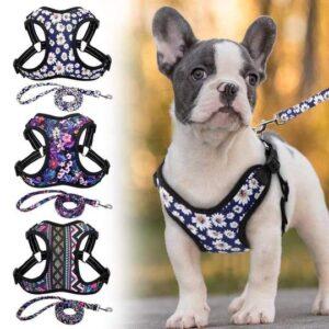 fashion printed french bulldog harness
