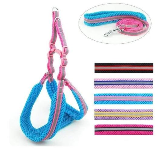 ULTRA LIGHT REFLECTIVE PADDED HARNESS AND LEASH SET