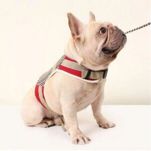 canvas french bulldog harness vest