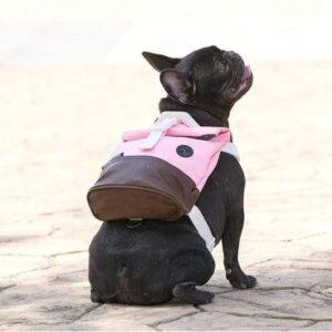 outdoor backpack french bulldog harness
